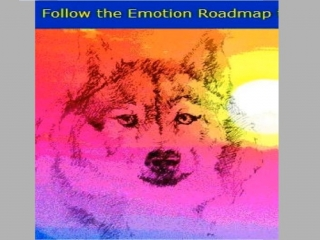 The Emotion Roadmap